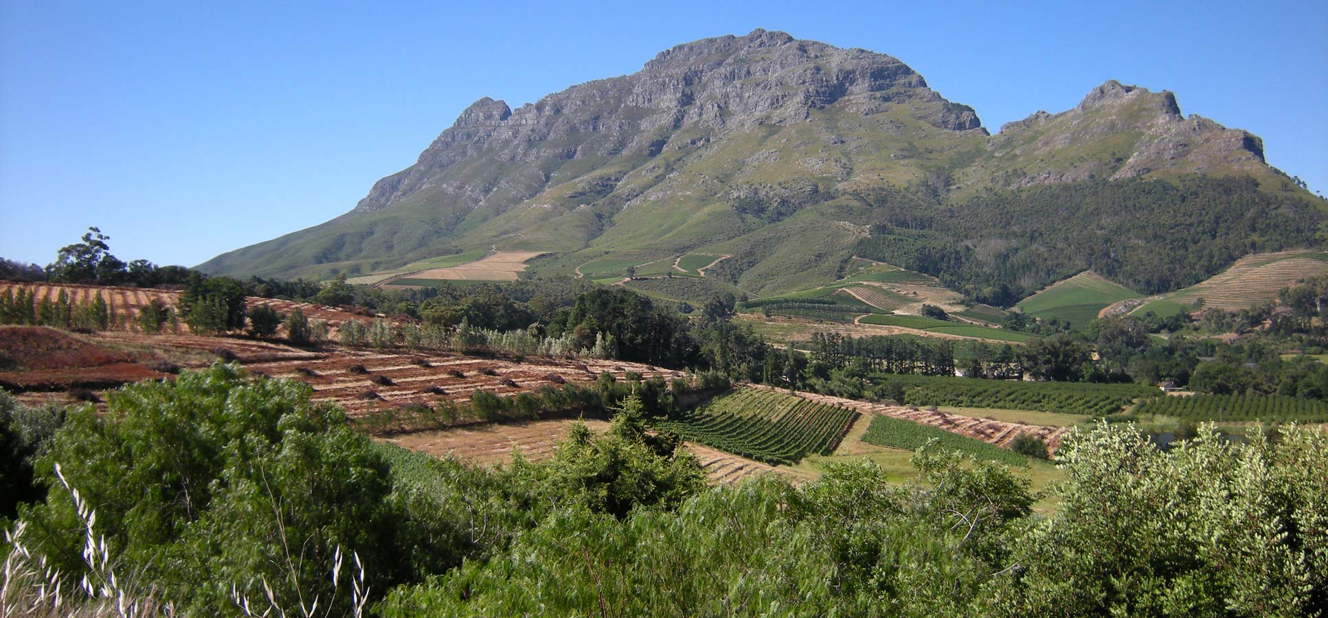 Travel reviews Franschhoek South Africa